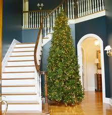 12 Ft Christmas Tree Hobby Lobby by Large Illuminated 12 U0027 Yuletide Pine Artificial Christmas Tree Ebth