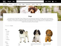 Dog Breeds That Dont Shed Uk by 100 Dogs That Dont Shed Uk Best 25 Posh Sheds Ideas On