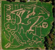 Pumpkin Patch Farms Nashville Tn by Middle Tennessee Farm Honors Nashville Predators And Fans With