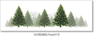 Pine Tree Winter Border Design With A Group Of Green Christmas Trees On White Background As Festive Evergreen Forest Element Fog And Snow For The
