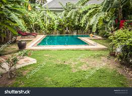 Swimming Pool Private Tropical Villa Backyard Stock Photo ... Front Yard Landscaping With Palm Trees Faba Amys Office Photo Page Hgtv Design Ideas Backyard Designs Wood Above Concrete Wall And Outdoor Garden Exciting Tropical Pools Small Green Grasses Maintenance Backyards Cozy Plant Of The Week Florida Cstruction Landscape Palm Trees In Landscape Bing Images Horticulturejardinage Tree Types And Pictures From Of Houston Planting Sylvester Date Our Red Ostelinda Southern California History Species Guide Install