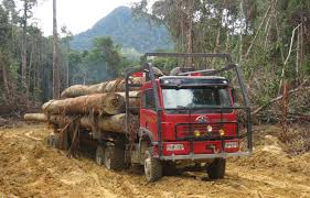Berkenalan Dengan Truk Logging Di Indonesia | AWANSAN Classic Truck Trader Wallpapers Hd Quality Big Magazine Pictures Class 7 8 Heavy Duty Cventional Sleeper Trucks For Sale Dump Tarps Kits Or In Tn As Well Used Pickup Quailty New And Used Trucks Trailers Equipment Parts For Sale Texas Truck Trader Ripple Machinery Car And Iota Online Best Of Diesel 7th And Pattison The 25 Best Semi Trailers For Sale Ideas On Pinterest Small
