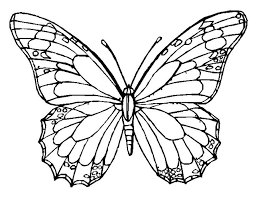Butterfly Coloring Page Book