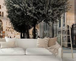 mann geht unter einem schönen olivenbaum in beirut libanon moniek kuipers