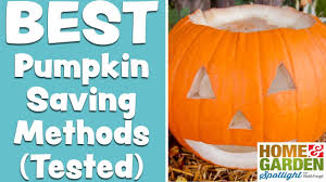 Ways To Make A Pumpkin Last by The Best Method To Preserve Jack O Lanterns Pumpkins Youtube