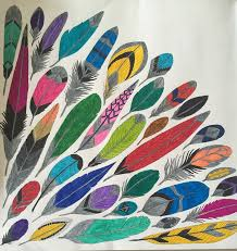 So Many Different Feathers Colours Coloring BooksAdult