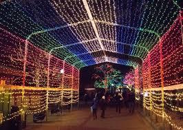 franklin square festival light show
