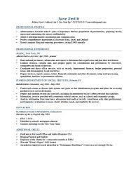 Professional Profile Resume Templates