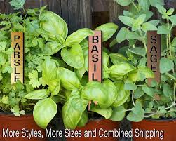 Straight-Up 06in Bronze Bonanza Metalgraph Acrylic Herb Garden Stakes Plant  Markers (Coupon Code On FB) Coupon Codes Cheapest Dinar Buy Iraqi Zimbabwe Customer Marketing Coupons Bonanza Help Center Get Upto 50 Off On Video Courses By Adda247 Sale Realme 2 Pro Online India 11 Tb 4g Data Agmwebhosting Avail 20 Discount Theemon Themes Templates And Plugins Com Coupon Code Tce Tackles 11th Lucky Draw Hypermarket Easymytrip New Year Fashion Chauvinism Diwali Offer Comforto Mattrses Printable Coupons Cinnati Zoo Sneakers Couponzguru Discounts Promo Offers In