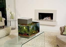 fluval edge aquarium 52 x 42 x 38 cm