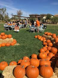 Caledonia Pumpkin Patch by Summerlin One Of The Country U0027s Best Selling Master Planned