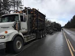 Logging Truck Loses Load Near Mayook | The Drive FM Self Loader Logging Truck Image Redding Driver Hurt In Collision With Logging Truck 116th Tg 410a Wcrane 3 Logs By Bruder Helps Mariposa County Authorities Stop High Speed Accidents Youtube Forest Service Aztec New Zealand Harvester Forwarder More Wreck Log Timber Poster Print 24 X 36 Logging Truck Fixed Bunk V10 Fs17 Farming Simulator 2017 17 Ls Mod Kraz 250 Spintires Mods Mudrunner Spintireslt Hi Res Stock Photo Edit Now Shutterstock