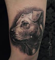 DARBAI TATTOO GALLERY 2013 Dog Portrait By MetalTATTOO