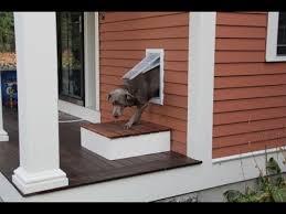 Best Pet Doors For Patio Doors by Installing A Pet Door Youtube