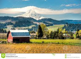 Red Barn, Apple Orchards, Mt. Hood Stock Image - Image: 24641381 Herb Apple Gruyere Scones Now Forager The Best Picking Near Atlanta In Map Form Tennessee Seerville Barn Orchard Winesap Apples 18 Bushel Red Orchards Mt Hood Stock Image 24641381 Orchard Front Mount Photo 27690034 Shutterstock Winery Elkhorn Wi Barnquilt Appleorchard Mapping Georgias In Time For Fall Splendor Experience Autumn At Edwards West
