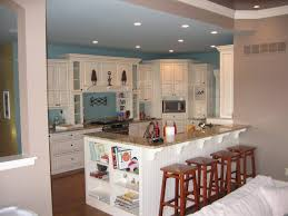 Kitchen Dinning Room Cailing Light Basement Ideas Small
