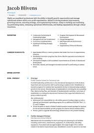 Teacher Cv Examples And Template