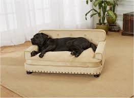 Snoozer Overstuffed Sofa Pet Bed Petsmart by Large Dog Beds Petco Petco Big Head Jungle Animal Plush Dog Toy