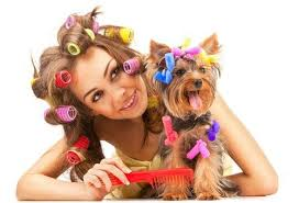 hair hair everywhere what s a pet parent to do trudog