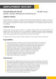 Information Technology Resume Template 055 Information Technology