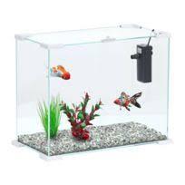 aquarium achat aquarium pas cher rue du commerce