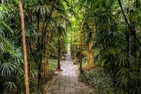 100 Bali Garden Ideas Bisma Eight Ubud A Luxury Boutique Hotel In Ubud