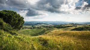 Landscape Photo Of Tree On Green Hills Tuscany Volterra Italy HD Wallpaper