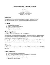 Sample Resume Government Project Manager With