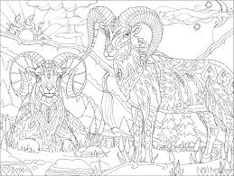 Stylish Design Ideas Psychedelic Coloring Book For Adults Color Away Ya Hooligans