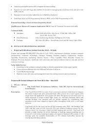 Sas Resume Sample 2 Business Analyst Financial
