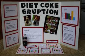 The Jenkins Family First Science Fair