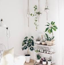 pflanzenecke im wohnzimmer pflanzen wohnzimmer zimmer