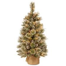 National Tree Company 3 Foot Glittery Bristle Pine Pre Lit With White LED