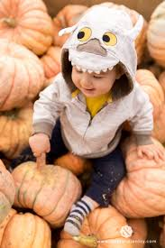 Pumpkin Patch Reno Sparks Nv by Blog Page 16 Of 48 Fifth And Chestnut
