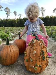 Best Pumpkin Patch Charlotte Nc by Life Valens Love