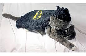cat batman costume top 10 cat costumes to hiss at