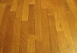 Wood Flooring Is A Popular Feature In Many Houses