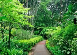 Mounts Botanical Gardens Flowers Plants & Special Events