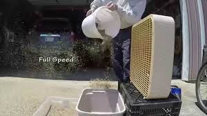 Threshing Floor Bible Meaning by Threshing Sifting U0026 Winnowing Wheat Youtube