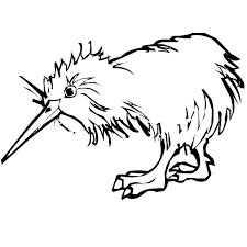 Kiwi Bird Wet Hair Coloring Pages PagesFull