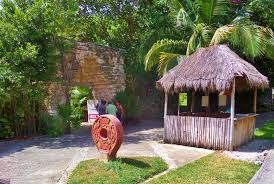 Xaman-Ha Bird Sanctuary In Playa Del Carmen - Everything Playa Del ... Florida Exotic Bird Sanctuary Infomercial Youtube Birdhouse Garden Arbor Super Start Birds And Houses Way To Attract Backyard Wildlife Habitat Design Ideas Of House Gardening For The How Create A Birdfriendly Fresh Architecturenice Sanctuary Sprouts Up In Spruce Hill Huckleberry Hollow Oasis Beautiful Butterflies Bees Everything You Need Outstanding Hero Residential Gardens Part Ii Audubon New Of North America Poster Species Image On Wonderful