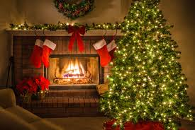 Best Christmas Tree Type For Allergies by A Stocking Stuffer For Christmas The Scholarly Kitchen