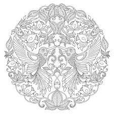 Buy Johanna Basford Secret Garden Hummingbird Colouring Canvas Online At Johnlewis