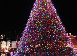 Christmas Tree Rockefeller 2017 by Awesome Picture Of When Is Nyc Christmas Tree Lighting 2017