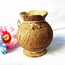 Flower Vase Made Of Coconut Shell Beautiful Pin By Rahamtunisa Pathan On Craft Ideas