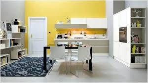 cuisine jaune et blanche peinture murs cuisine photo placard cuisine blanche etagere
