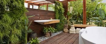 pflanzen fürs bad splash i trendsetter bad