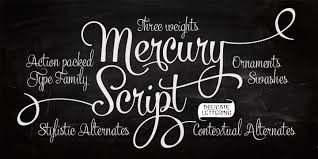 Mercury Script Webfont & Desktop font  MyFonts