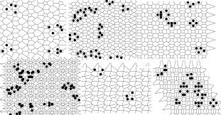 Numpy Tile 3d Array by Code Challenge Implement The Game Of Life On Anything But A