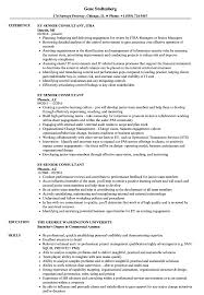Download EY Senior Consultant Resume Sample As Image File